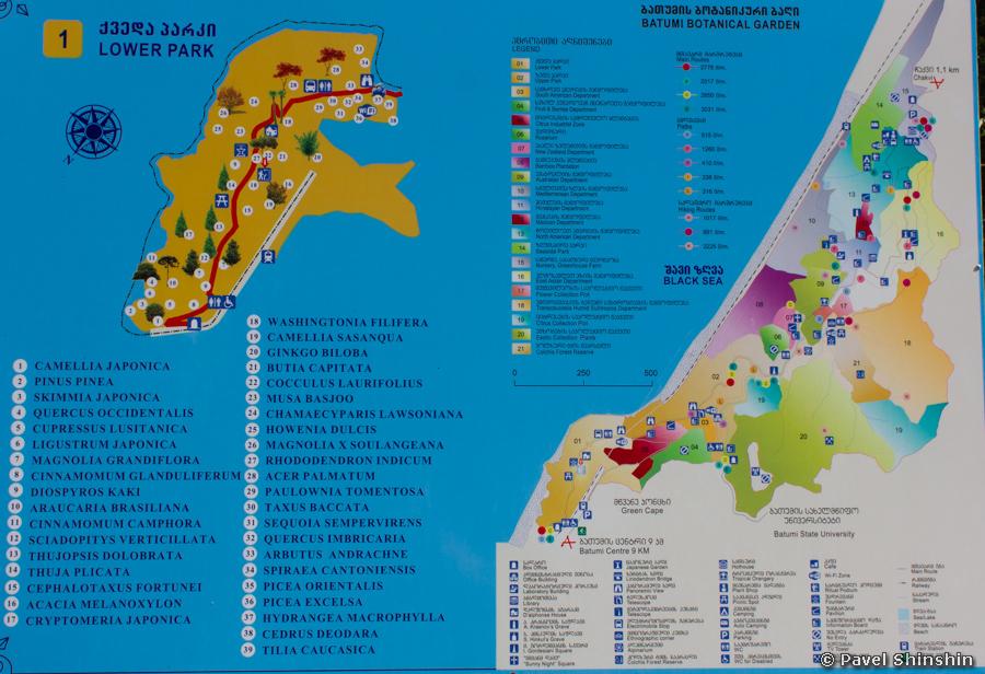 Как доехать до ботанического сада в батуми