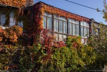 Прогулка по старому Тбилиси. Часть 2