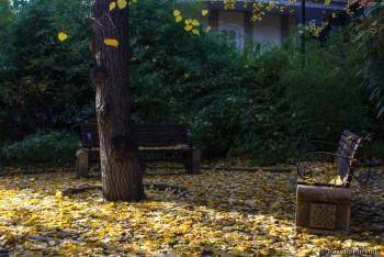 Прогулка по центру Тбилиси. Часть 3